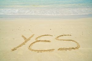 say no to say yes to joy