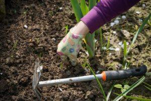 trust-weeding